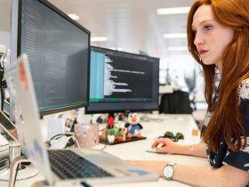 software developer career